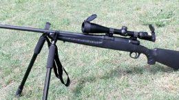 La ville de Montréal songe à autoriser le port d'armes sur son territoire dû à la présence de coyotes