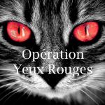 Lancement de l'Opération Yeux Rouges